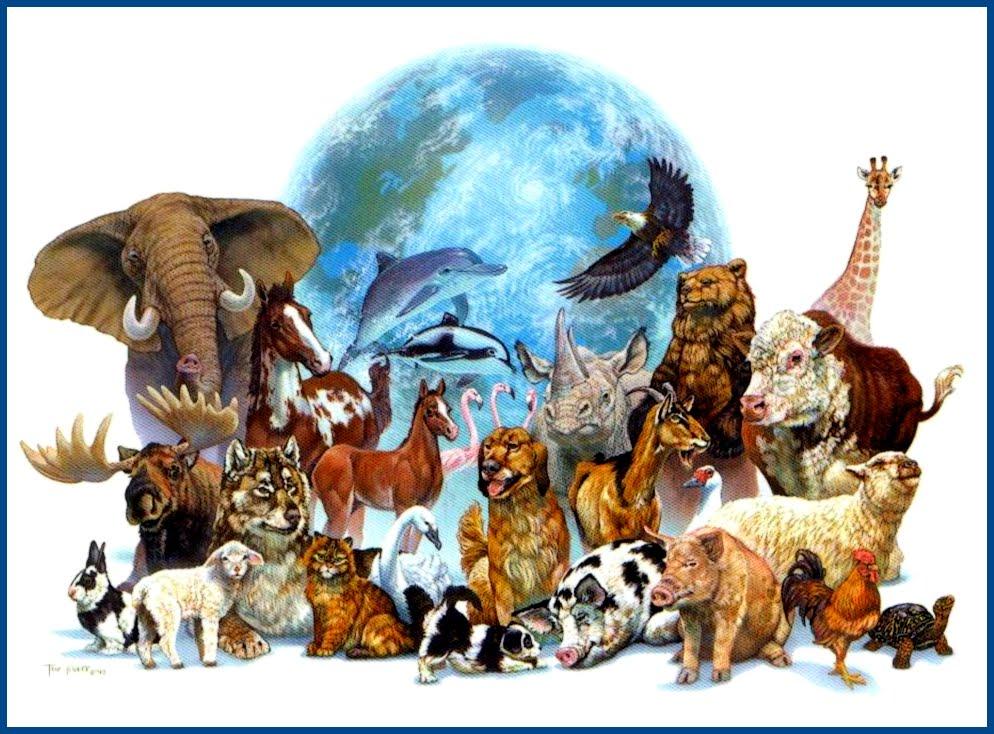 100 word challenge animal