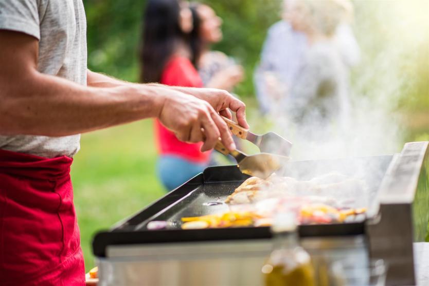 Kurumsal şirket piknik organizasyonları catering