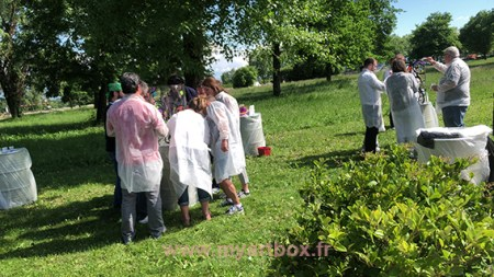 animation_team_building_geneve