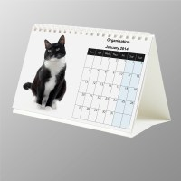 Custom Photo Desk Calendars   Rachael Edwards