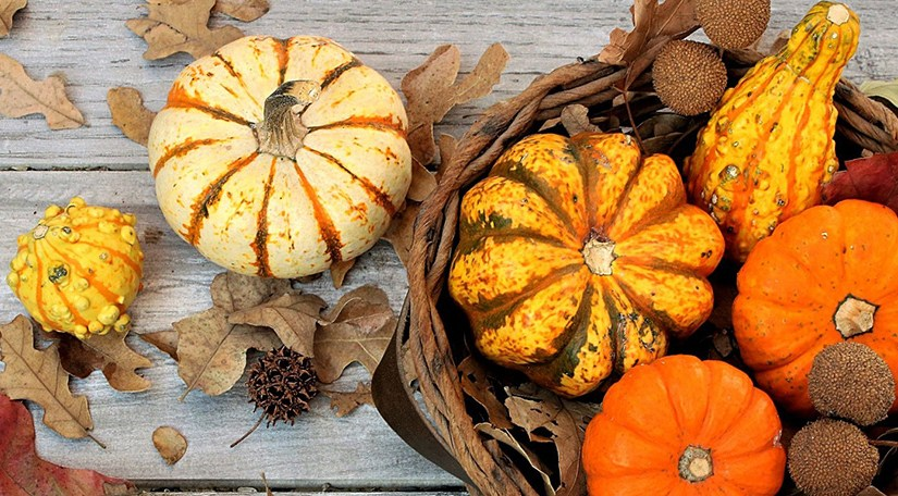 Minute Monday: 5 Easy DIY Fall Decorations