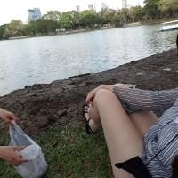 Lumpini Park - Bangkok's Central Park