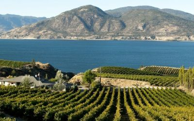 Three Reasons Real Estate In Penticton Is Right For You
