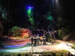 night safari singapore show