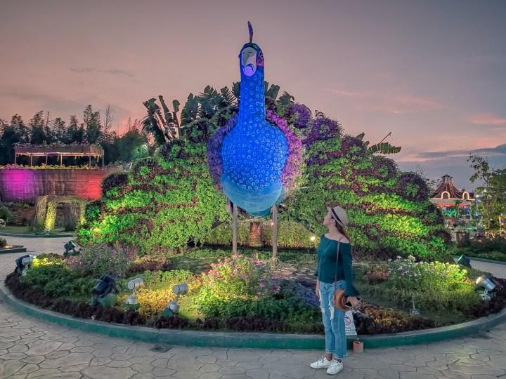 The Garden Travel DIY peacock
