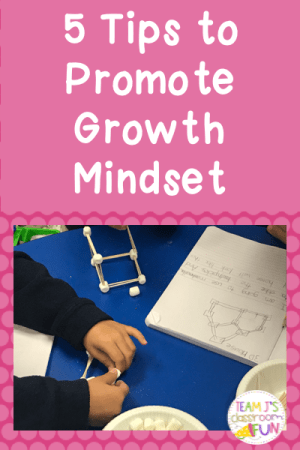 Pin image for 5 Tips to Promote Growth Mindset Blog Post