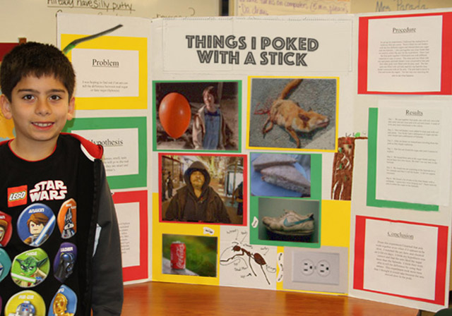 27 Funny Science Fairs with Projects that Rock! ~ Things I poked with a stick elementary school