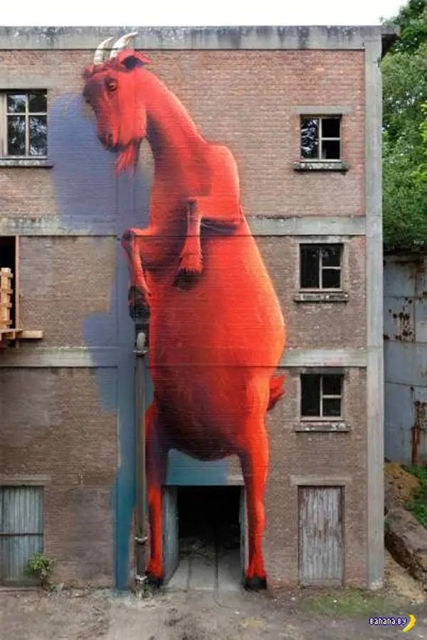 Cool art mural on building ~ giant goat standing ~ 35 Funny Pics & Memes