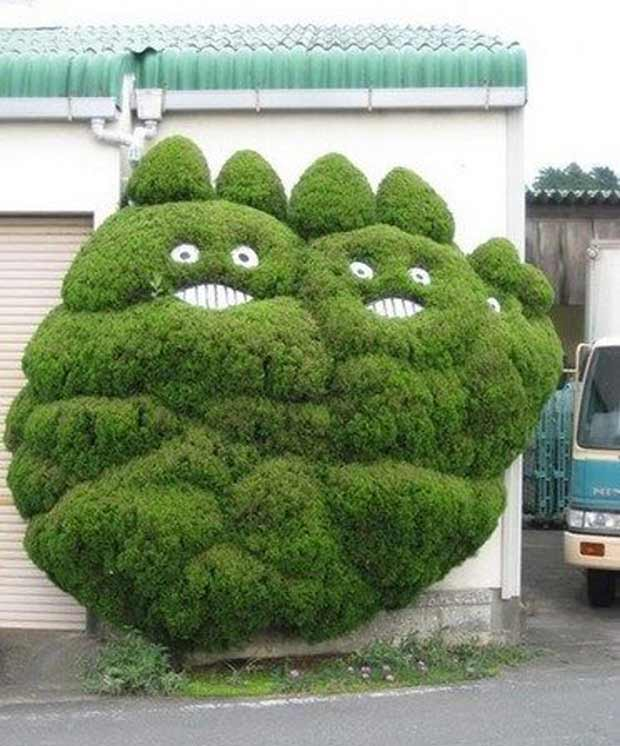 Cool cats topiary bushes