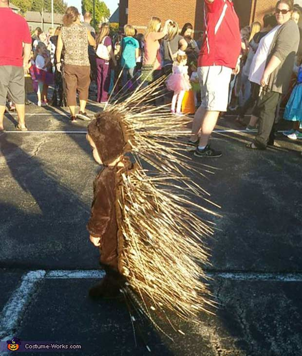 Kid dressed as porcupine ~ Best Halloween Costumes