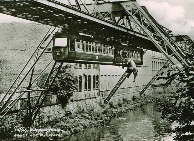 This daring elephant took a leap from a German monorail in 1950. He lived… for another 40 years.