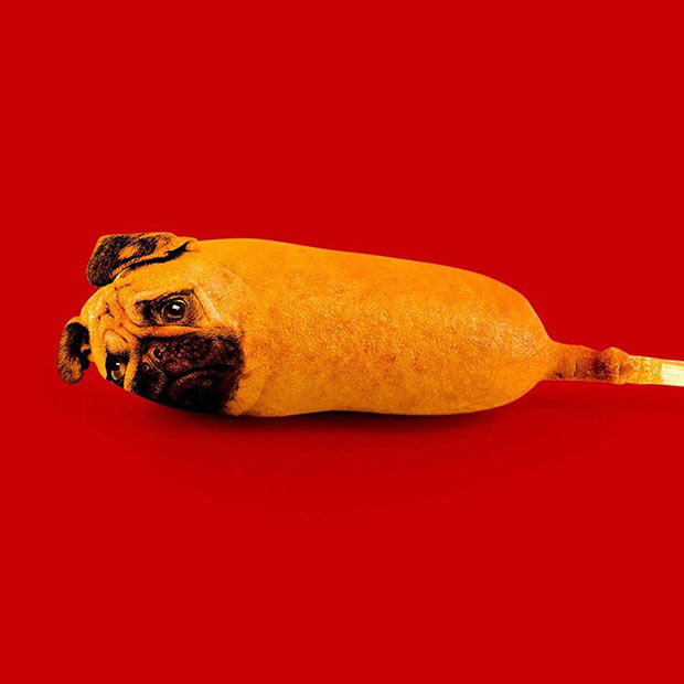 An authentic corn dog ~ Funny Pics and Memes ~ randy lewis collage