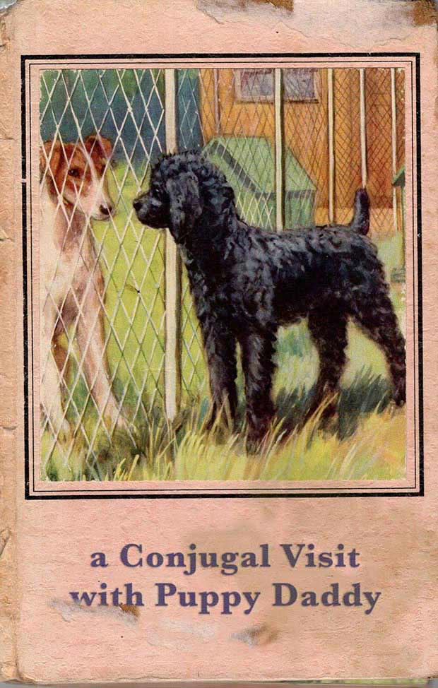 Visiting hours are from 10 to 2 ! a Conjugal Visit with Puppy Daddy ~ inappropriate children books ~terrible, bad kids books
