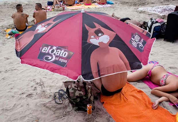 cat on a hot pink beach umbrella ~.~satisfying perfectly time photos