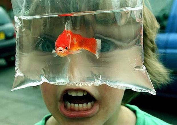 Funny kids, funny face ~ 33 Funny Pics and Memes, Random Humor
