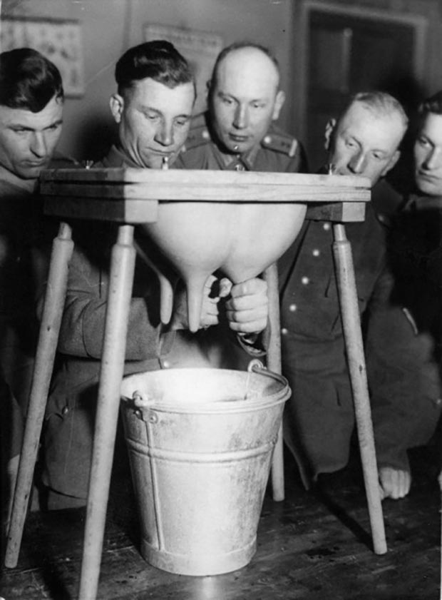35 Funny Pics and Memes Ya Gotta See ~ ~ vintage snap W.W. II solders practicing milking cow udders