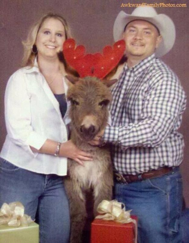 31 Awkwardly Funny Family Christmas Photos~ Card couple with reindeer ass pets