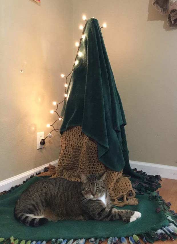 21 Genius Ways to Protect Christmas Trees from Pets