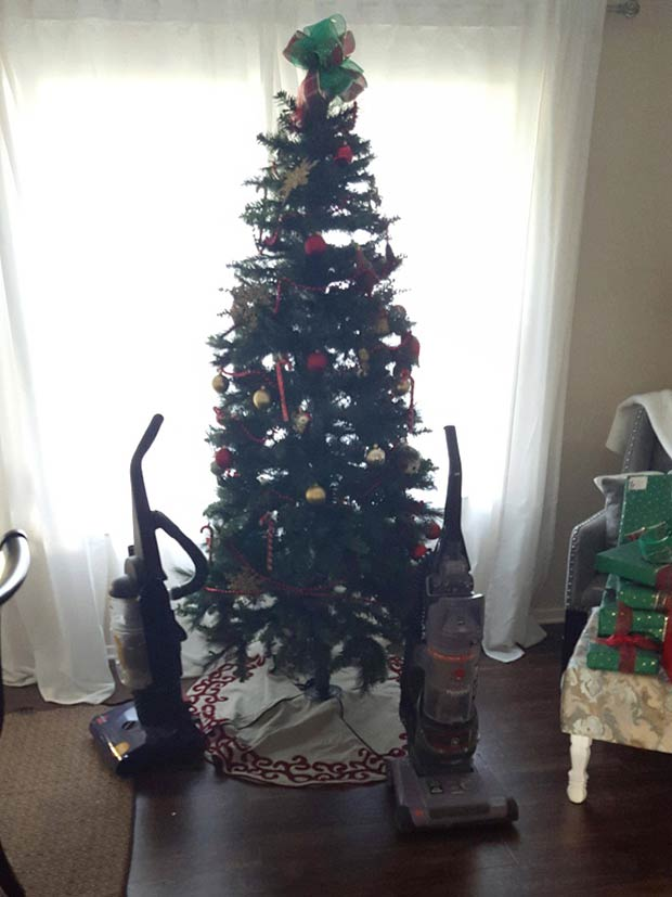 21 Genius Ways to Protect Christmas Tree from Pets