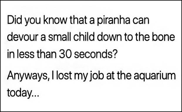 33 Funniest Memes and Pic to Get Your Laugh On ~ lost my job at aquarium
