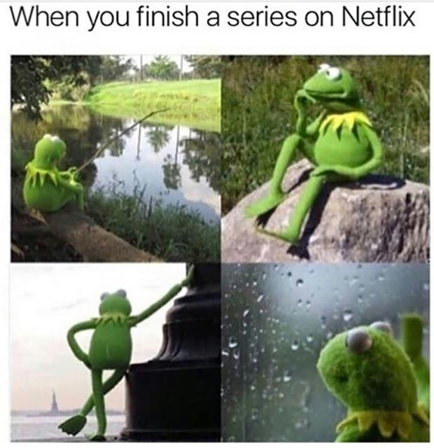 31 Best Memes and Funny Pics That'll Wet Your Eyeballs ~ kermit the frog when you finish Netflix series