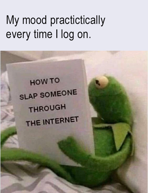 33 Funny Memes and Pics to Release Your Inner Humor ~ kermit the frog slap someone through the internet sarcasm