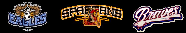 Team Logos in Vector Format