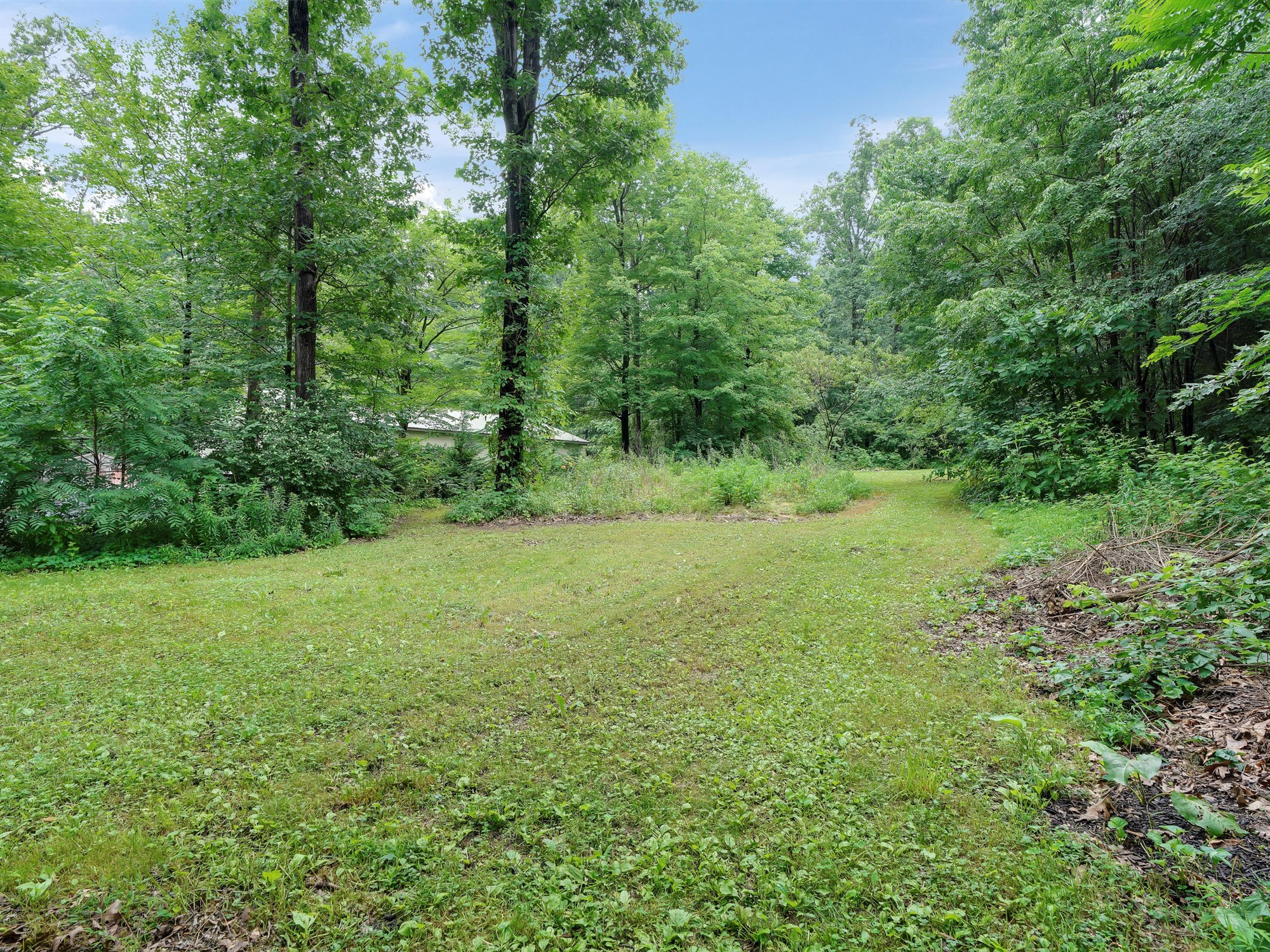 850 Prescott Dr. - wooded setting