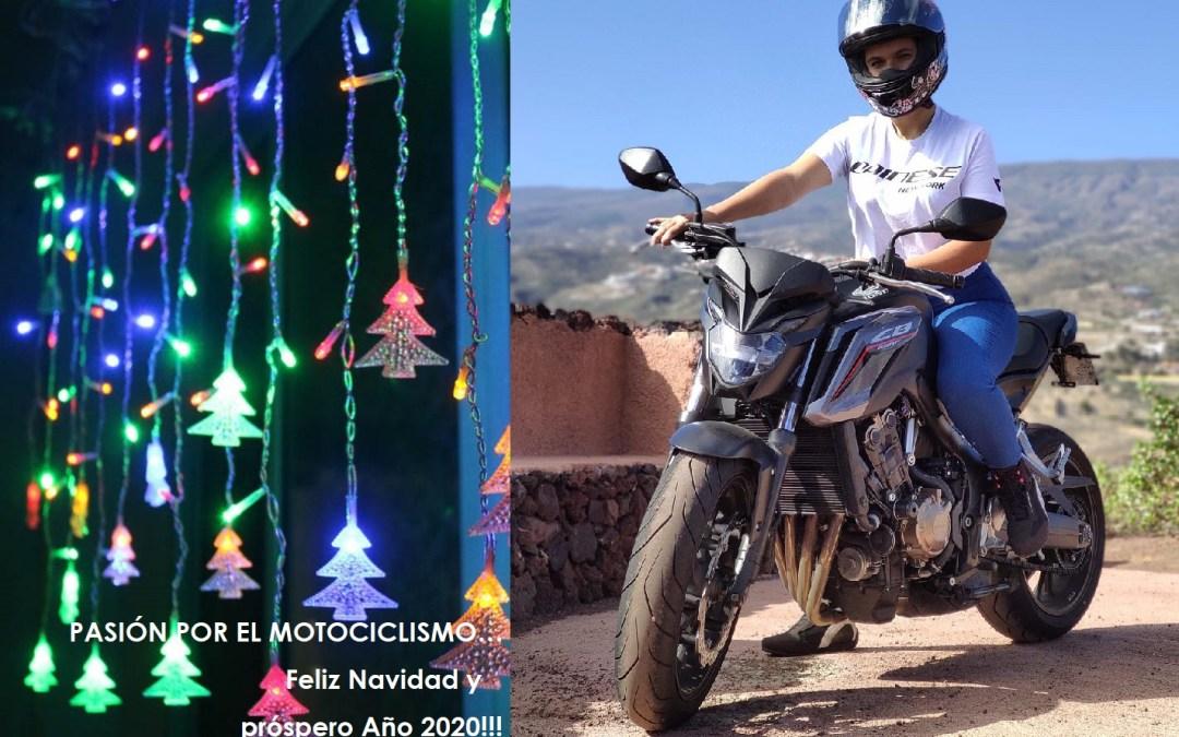 ¡Feliz Navidad y un Próspero Año Nuevo 2020!