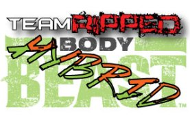 Body Beast Hybrids: P90X3 and T25 - teamRIPPED