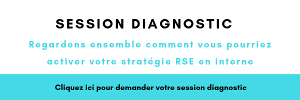 session diagnostic Feb19 FR