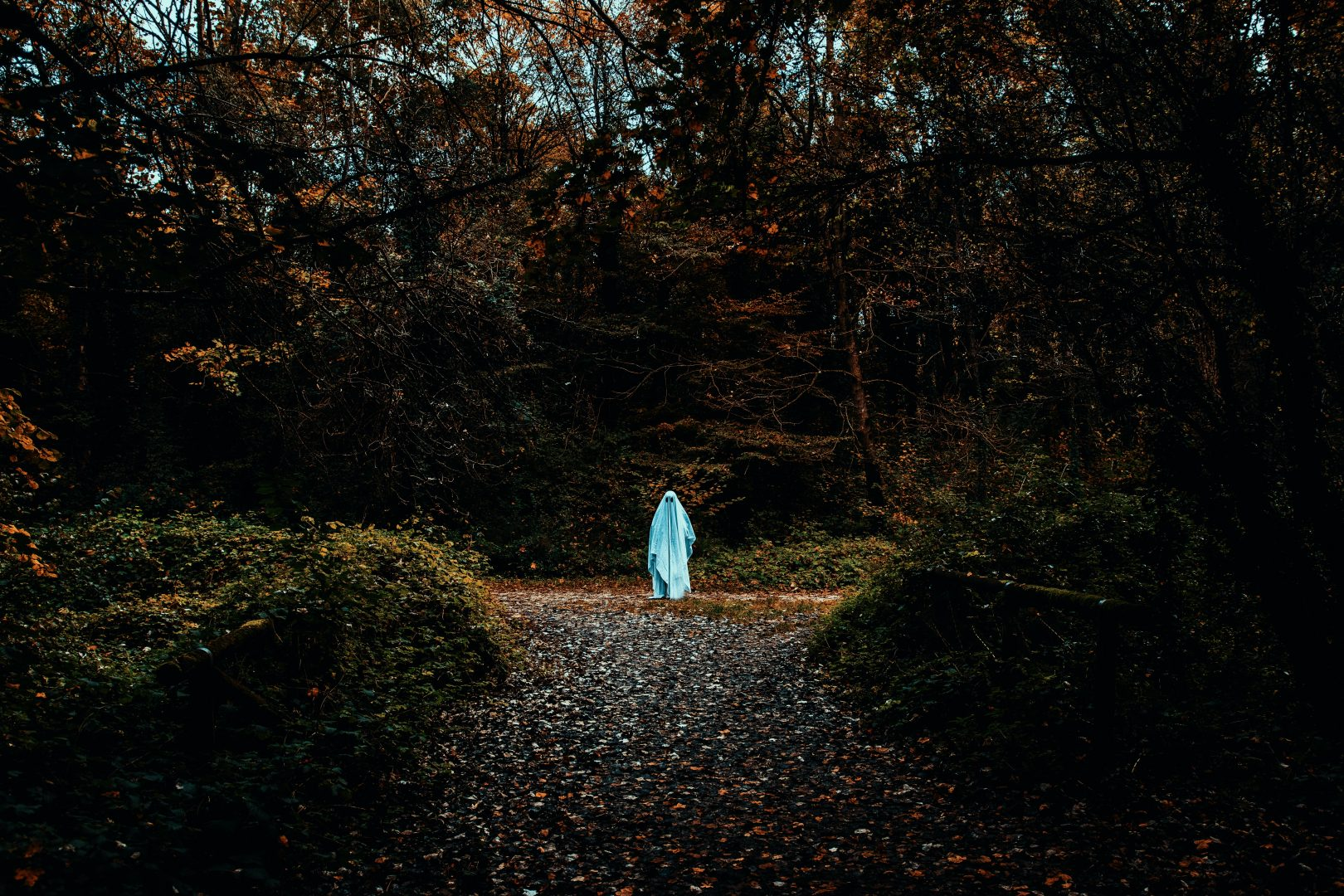 person in white robe walking on pathway between trees during daytime