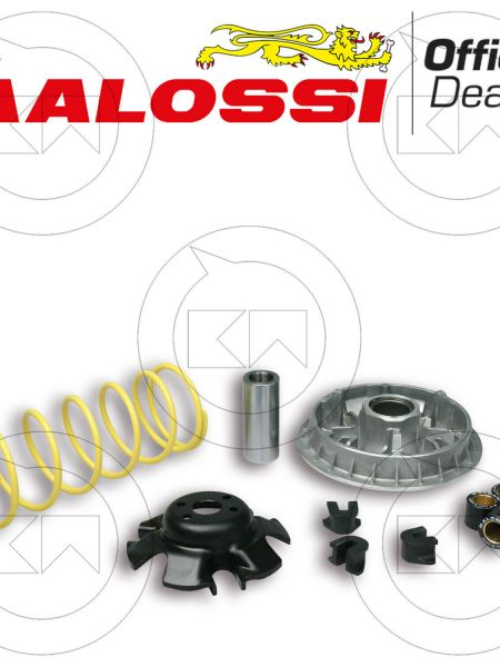 NUOVO KIT VARIATORE MALOSSI MULTIVAR 2000 5111838 KYMCO GRAND DINK 250 4T LC