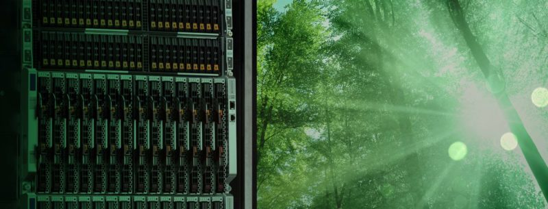 server and green