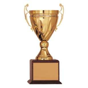 Metal Cup Trophy