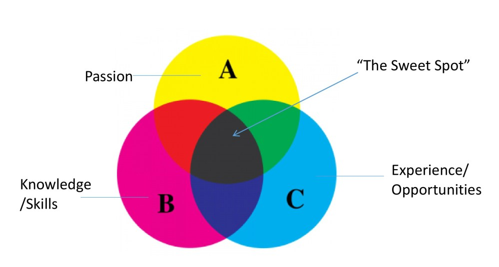 medium resolution of venn diagram passion what is that thing that you would do for the rest of your life even if you didn t get paid
