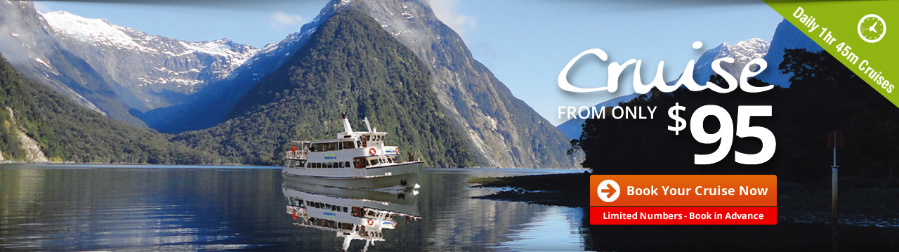 Milford Sound Family Owned Boutique Small Boat Cruise