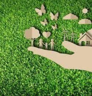 ecología del evangelio