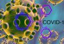 Protected: Cambodia COVID-19 Infographic (Coronavirus 2019-nCov Infographic)