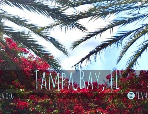 Tampa Bay, FL