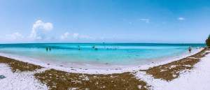 blue water lined by a white sandy beach at bahia honda state park