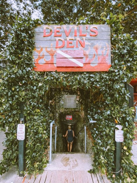 sign above vine covered entry to devil's den Florida