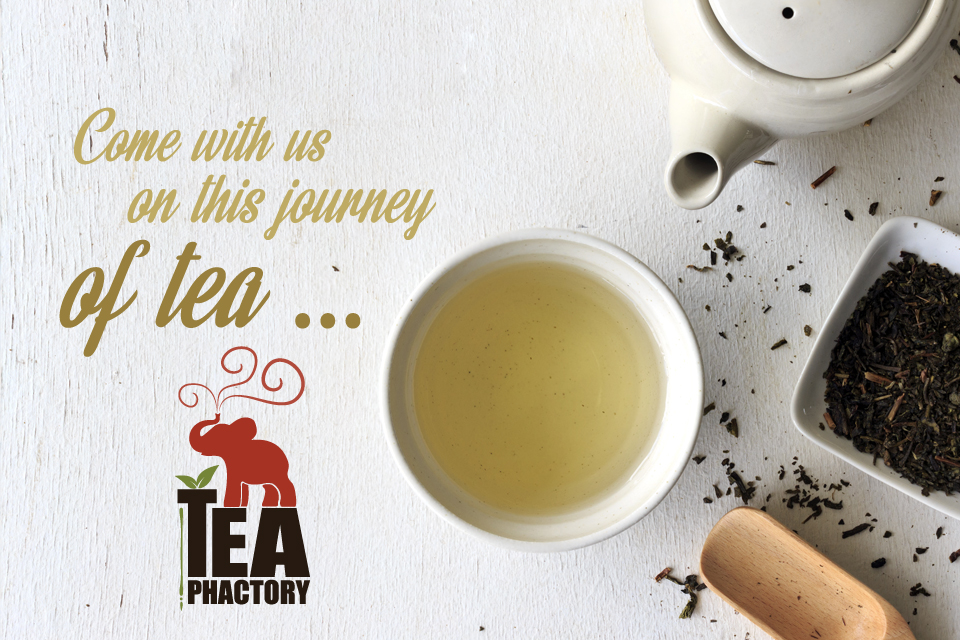 About Tea Phactory