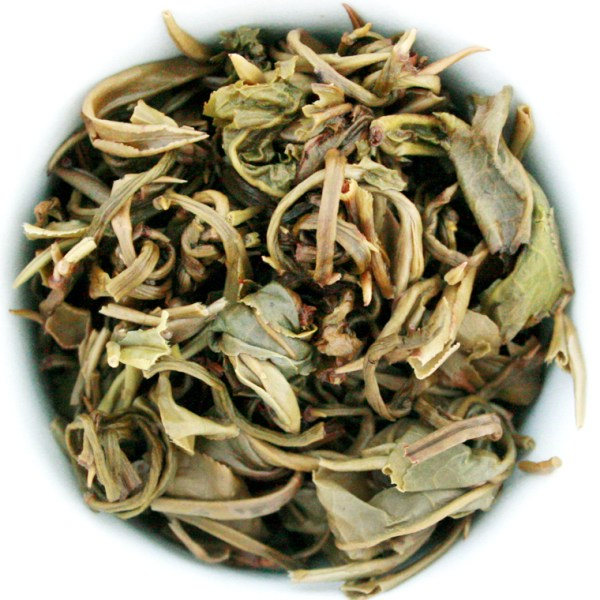 Jasmine Pearls Loose Leaf Green Tea wet leaf