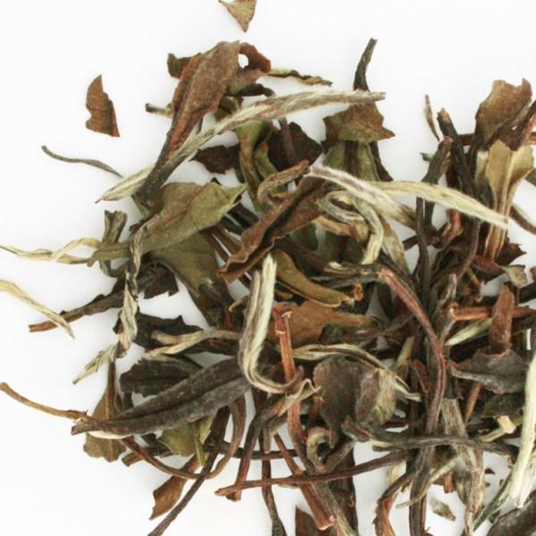 White Peony Loose Leaf White Tea