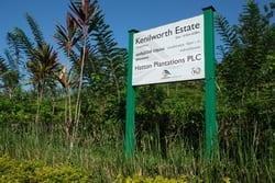 Kenilworth Estate