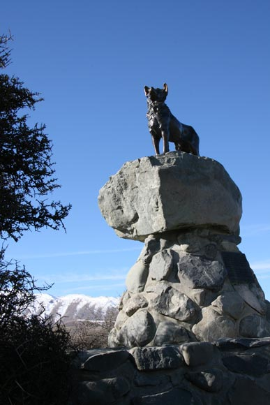 Border collie statue – Farm dogs – Te Ara Encyclopedia of ...