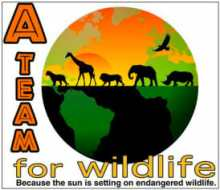 International A-Team for Wildlife