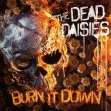 dead-daisies