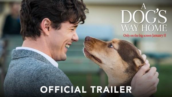 A Dog's Way Home Movie